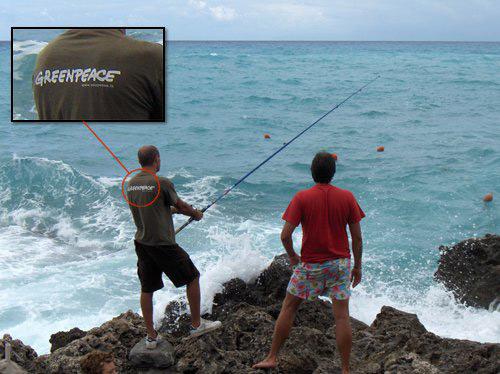 Greenpeace na rybách